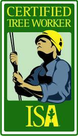 Texas Tree Service | Tree Care – ISA Texas Chapter